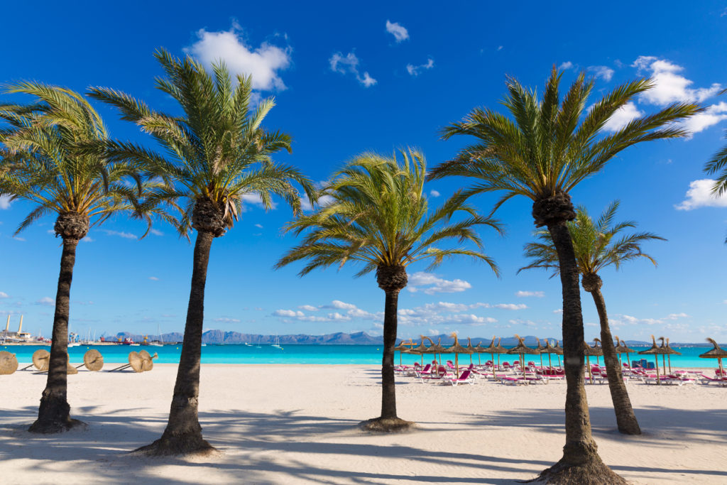 Vakantie naar Mallorca