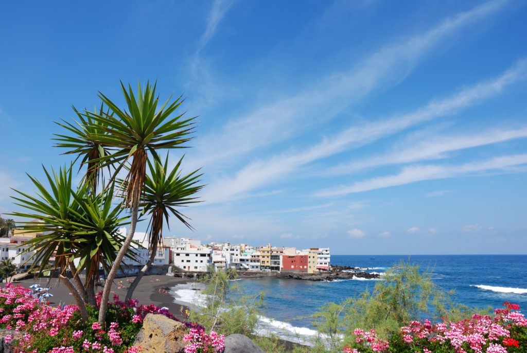 Vakantie Tenerife Krokus