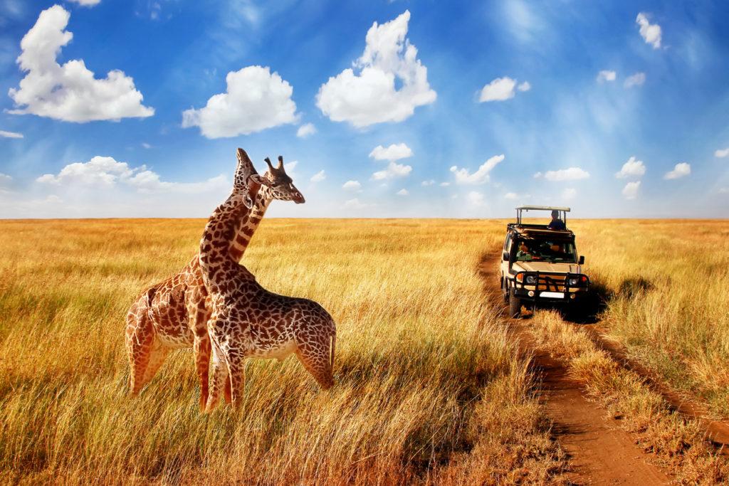 Kenia Vakantie