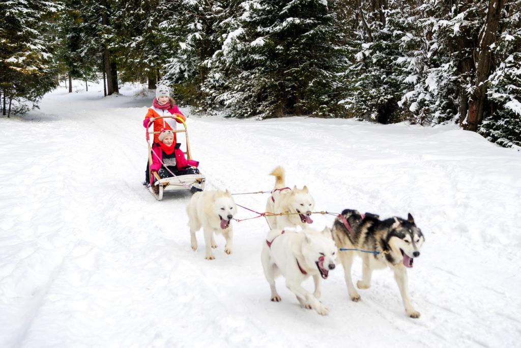 Winter Vakantie Lapland