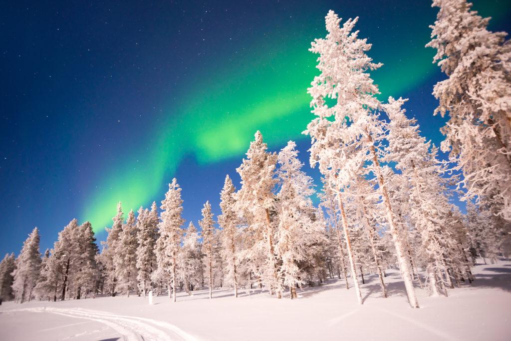Saariselän Marjamajat - Finland - Lapland