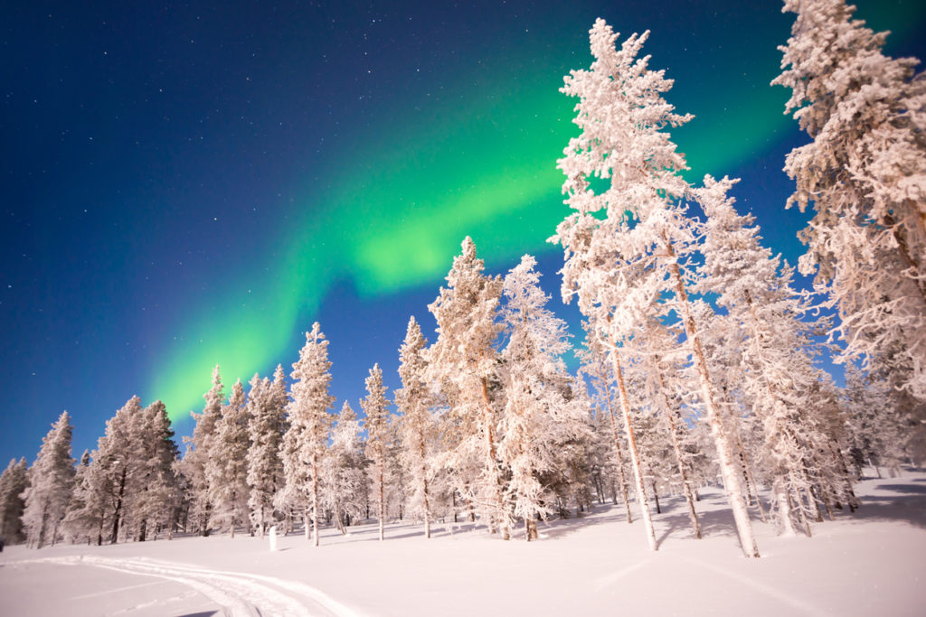 Aurikorinne Ski-Inn Appartementen 4****, Finland
